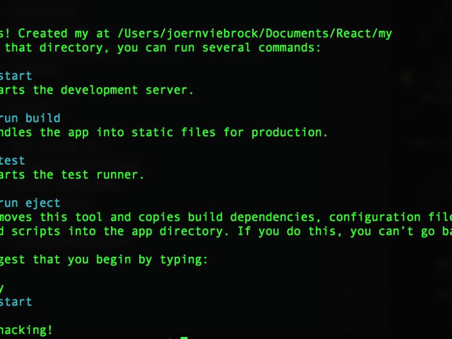 Kommandozeile ReactJS Projekt erzeugt